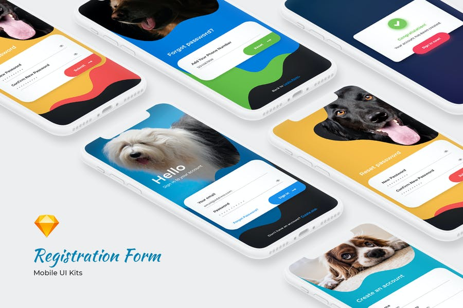 Login & Signup Form - Mobile UI Kits