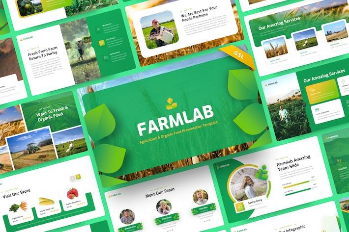 Farmlab - Сельское хозяйство и органические продукты питания Google слайды