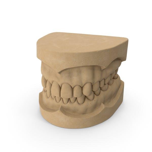Thumbnail for Dental Mold