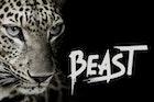 Beast - Brush Font