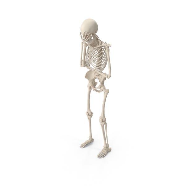 Thumbnail for Skelett Facepalm