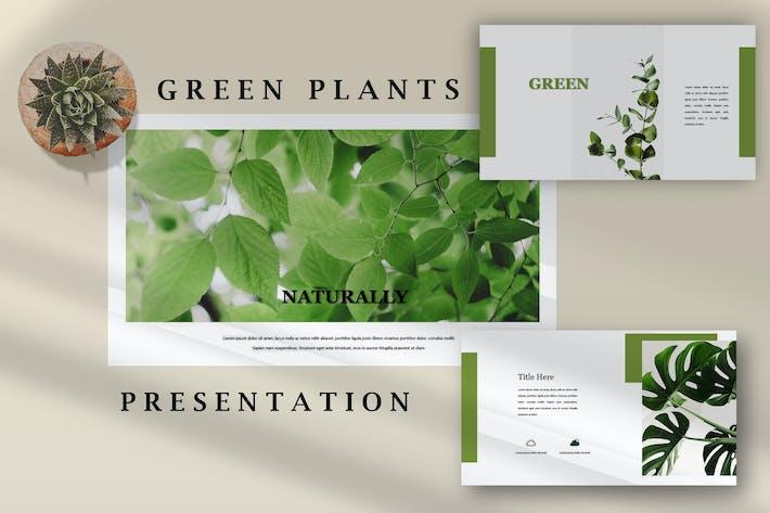 Thumbnail for Зеленые растения - Природа Powerpoint Шаблон