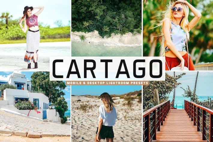 Thumbnail for Пресеты Lightroom для мобильных ПК и настольных ПК Cartago