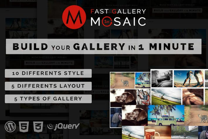 Thumbnail for Fast Gallery Mosaic - Wordpress Plugin