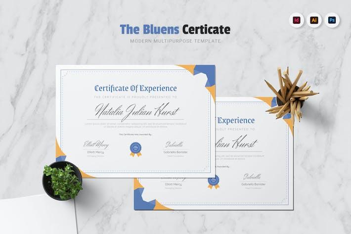Thumbnail for Bluens Certificate