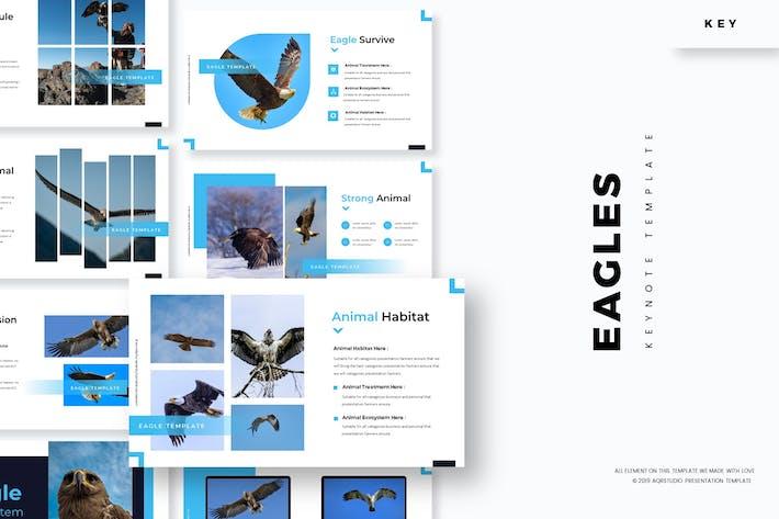 Thumbnail for Eagles - Keynote Template