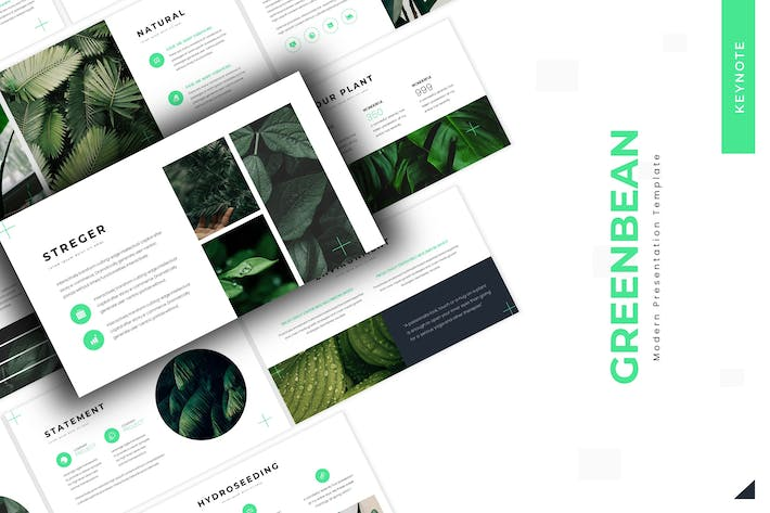 Thumbnail for Greenbean  - Keynote Template