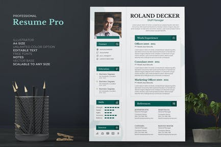 Clean Professional Resume / CV Pro