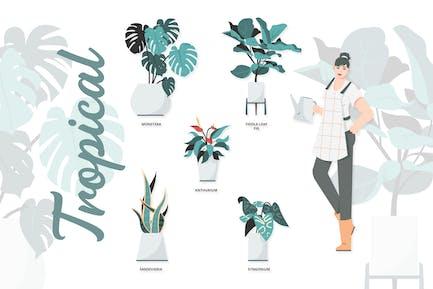 Tropical - Ilustraciones